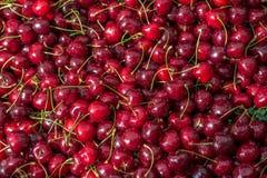 Körsbär i marknad Arkivbild