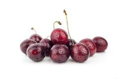Körsbär körsbärsrött träd, röda mogna körsbär Arkivbild