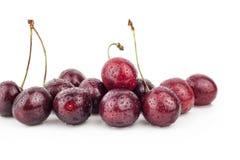 Körsbär körsbärsrött träd, röda mogna körsbär Royaltyfri Bild