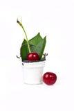 Körsbär med ett blad Royaltyfri Bild