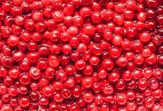 Körsbär med gropar i sockersirap: laga mat körsbärsrött driftstopp Royaltyfri Bild