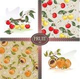 Körsbär och aprikors Royaltyfri Fotografi