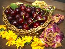 Körsbär och blommor royaltyfri foto