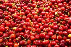 Körsbär och stammar Arkivfoton