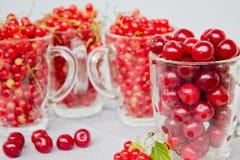 Körsbär och vinbär Royaltyfri Fotografi