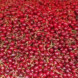 Körsbär på en bondemarknad Arkivbild