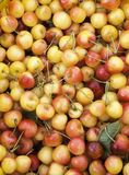 Körsbär på en farmer'smarknad royaltyfri bild