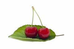 Körsbär på ett blad Royaltyfri Fotografi