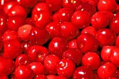 Körsbär som är röd Fotografering för Bildbyråer