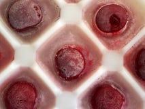 Körsbär som frysas Royaltyfria Foton