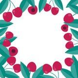 Körsbärsröd bärram i plan stil Garneringmall royaltyfri foto