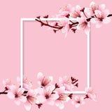 Körsbärsröd blomning stock illustrationer
