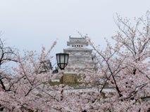 körsbärsröd blomning av den Himeji slotten arkivfoto