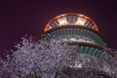 Körsbärsröd blomning och Tianyuan slott royaltyfria bilder