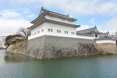 KÖRSBÄRSRÖD BLOMNING PÅ SUMPU-SLOTTEN I den SHIZUOKA STADEN, Japan royaltyfri fotografi