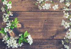 Körsbärsröd blomning på träplankor Royaltyfri Foto