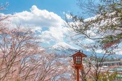 Körsbärsröd blomning sakura i vårsäsong och Mt fuji på blåtten arkivbilder