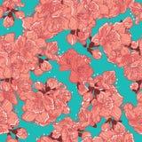 Körsbärsröd blomning, sakura sömlös modell Fotografering för Bildbyråer