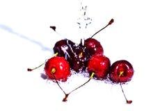 Körsbärsröd frukt med vatten tappar på vit bakgrund royaltyfri fotografi