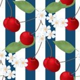 Körsbärsröd gjorde randig sömlös modell och blommor Royaltyfri Bild