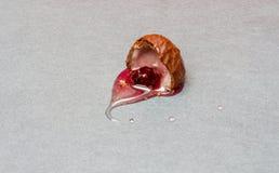 Körsbärsröd konfekt Royaltyfri Foto