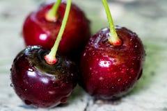 Körsbärsröd korg Cherry Tree Branch nytt moget för Cherry söt ch Arkivfoto