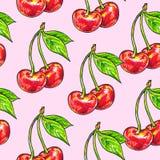 Körsbärsröd sötsak på en rosa bakgrund Seamless modell för design Animeringillustrationer handwork Royaltyfria Bilder