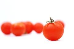 Körsbärsröd tomat Royaltyfria Bilder