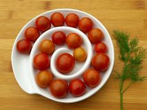 Körsbärsröd tomat och dill Royaltyfri Foto