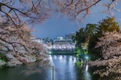Körsbärsröda blomningar i Tokyo, Japan Arkivfoton