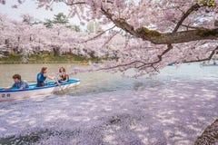 Körsbärsröda blomningar i vår på Hirosaki rockerar, Aomori prefektur, J arkivfoton