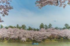 Körsbärsröda blomningar på den Hirosaki slotten Royaltyfri Foto