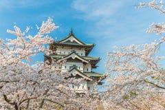 Körsbärsröda blomningar på den Hirosaki slotten Arkivfoton