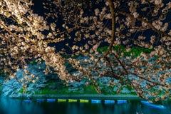 Körsbärsröda blomningar runt om Chidorigafuchi parkerar, Tokyo, Japan arkivfoto