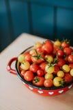 Körsbärsröda tomater Royaltyfri Fotografi
