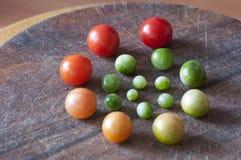 Körsbärsröda tomater av olik mognad, livcirkulering Royaltyfria Foton