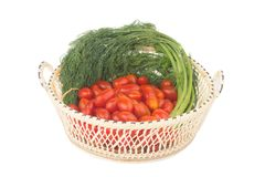 Körsbärsröda tomater Behandla som ett barn tomater Dill med rotar I korg shoppa Arkivfoto