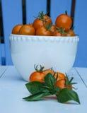 Körsbärsröda tomater i en vit bunke Fotografering för Bildbyråer