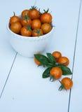 Körsbärsröda tomater i en vit bunke Arkivfoton