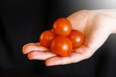 Körsbärsröda tomater i hand av kvinnan royaltyfri fotografi