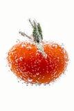 Körsbärsröda tomater med gasbubblor Arkivfoton
