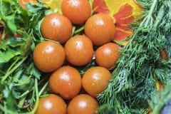 10 körsbärsröda tomater med persilja och dill Fotografering för Bildbyråer