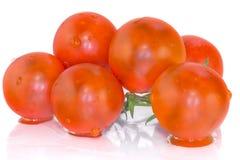 Körsbärsröda tomater med reflexion Arkivfoto