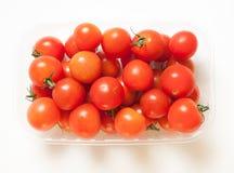 Körsbärsröda tomater med svansar Royaltyfri Fotografi