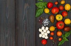 Körsbärsröda tomater, mozzarella, basilikasidor, kryddor och olivolja från över Italienska caprese salladreceptingredienser royaltyfri bild
