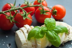 Körsbärsröda tomater och mozzarella med basilika arkivfoto