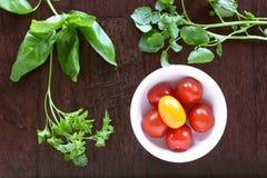 Körsbärsröda tomater och nya örter på mörkt trä Royaltyfri Fotografi
