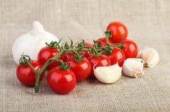 Körsbärsröda tomater och vitlök över jutetyg Arkivfoton