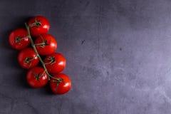 Körsbärsröda tomater på bakgrunder för konkret tjock skiva rundar royaltyfria foton