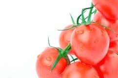 Körsbärsröda tomater på en vitbakgrund Arkivbilder